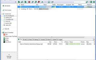 Что лучше BitTorrent или uTorrent — как выбрать программу, чтоб скачивать торренты